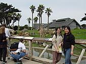 S.F Zoo:DSC03625