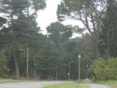 幽暗密林--Golden Gate Park:DSC03278