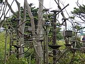S.F Zoo:DSC03621