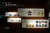 宜蘭烏石港賞鯨、登龜山島、蘭陽博物館一日遊:10706.JPG