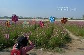 2010年大寮鄉紅豆文化節暨賞花行:0443.JPG