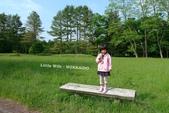 北海道無薰衣草之旅-TOMAMU渡假村、富良野、水教堂、層雲峽、小樽、札幌、狸小路:10800.JPG