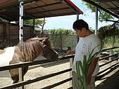 乳牛的家:迷你馬區.2