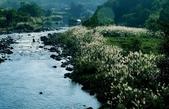 瑞芳-基隆河(一):基隆河一09.jpg