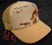 網帽:PICT4122拷貝.jpg