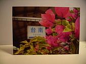 自拍自製名信片:PICT4101.JPG