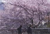 Hana & Alice:1520700483.jpg