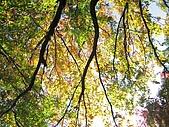 971120日本關西:嵐山 (10) (640x480).jpg