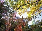 971120日本關西:嵐山 (11) (640x480).jpg