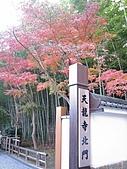 971120日本關西:嵐山 (12) (480x640).jpg
