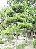971121日本關西:大阪城公園 (10) (480x640).jpg