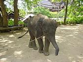 970517-22泰國自助行之pattaya的木雕之城:P5200360.JPG