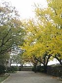 971121日本關西:大阪城公園 (20) (480x640).jpg
