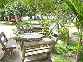 970517-22泰國自助行之pattaya的木雕之城:P5200316.JPG