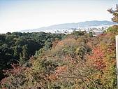 971120日本關西:清水寺 (9) (640x480).jpg