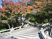 971120日本關西:清水寺 (33) (640x480).jpg