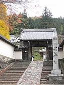 971118日本關西:郡上八幡城 (0) (480x640).jpg