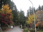 971118日本關西:郡上八幡城 (8) (640x480).jpg